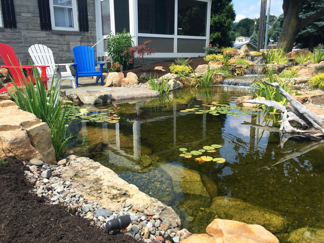Pond water garden edge treatments and repair contractors for Koi pond maintenance service