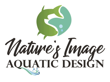 Pond Algae Control - Natures Image Aquatic Design - Topeka, KS